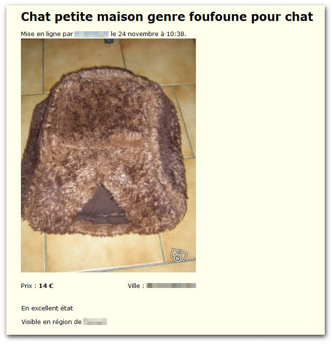 « Chatte » pour chat