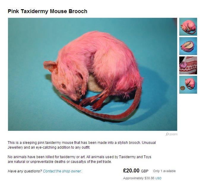 Idée cadeau: La souris empaillée montée en broche